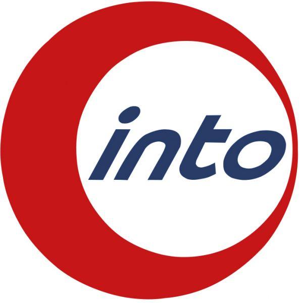 into_logo_2d